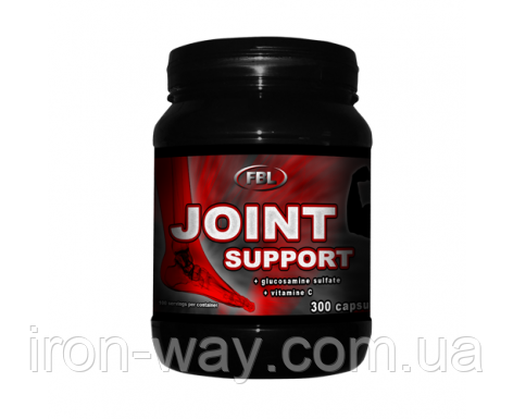 FBL Joint Support 300 caps