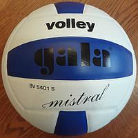 М'яч волейбольний Gala Mistral BV5401S, фото 1