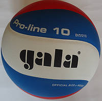 М'яч волейбольний Gala Pro-Line 10 BV5121S, оригінал, фото 1