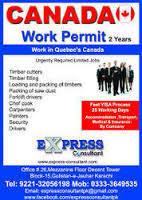 Помощь в получении разрешения на работу в Канаде, фото 2
