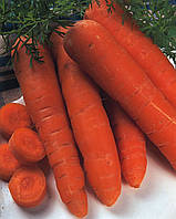 Морковь Vita Longa