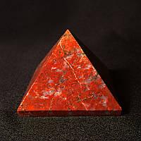Пирамидка яшмовая, фото 1