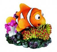 Товари для акваріумів