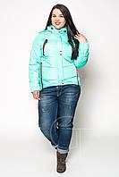 Куртка парка женская большие размеры