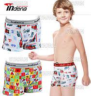 Купить боксеры детские на мальчика Indena. В комплекте 2 трусов