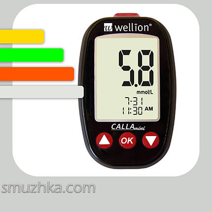 Глюкометр Wellion CALLA Mini+60 тест-полосок, фото 2