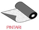 Pintari (ендова)