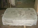 Мраморные толстомеры, фото 2