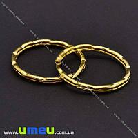 Кольцо для ключей, Золото, 25 мм, 1 шт (OSN-014805)