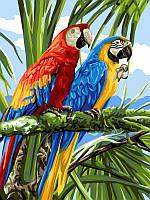 Картина-раскраска Турбо Яркие ара (VK126) 30 х 40 см