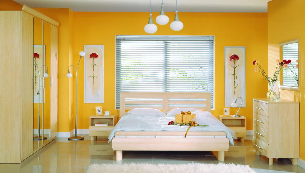 Спальня Дрим клен nida (BRW TM)