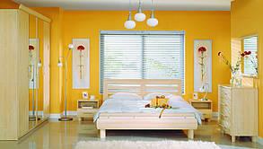 Спальня Дрим клен nida (BRW TM), фото 2