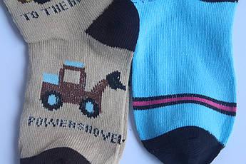 Детские носки мальчик 26-31 «Корона», фото 3