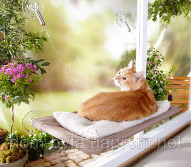Кроватка для кошек  window mounted cat bed