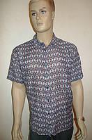 Мужская летняя сорочка Eskola (Турция) большой размер