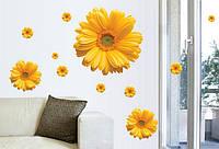 Інтер'єрна декоративна наліпка на стіну Гербери / Интерьерная декоративная наклейка на стену Герберы, mAY6015c