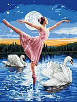Картины по номерам 30×40 см. Лебединое озеро