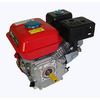 Двигатель Edon PT 210 (шпонка, вал 20мм)