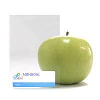 Монолитный прозрачный поликарбонат 2 мм Monogal