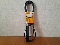 Ремень генератора Mitsubishi Lancer 10 1.8/2.0 2007--> Contitech (Германия) 6PK2563