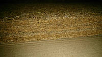 SoNLaB topper kokos 190х70