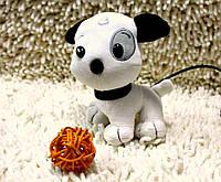 Веб камера - щенок, фото 1