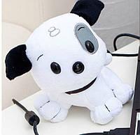 Веб камера - щенок