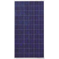 Солнечная батарея (панель) 300Вт 24В, поликристаллическая, PLM-300P-72, Perlight Solar