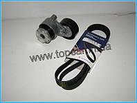 Комплект ремня генератора - 7701476475J(7701476475) Protego - на Renault Kango 97-, Megane II, Scenic II