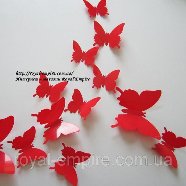 ЗД бабочки