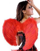 Прокат карнавальних крил і перьвых боа