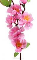 Ветка яблони розовой цвет, фото 1