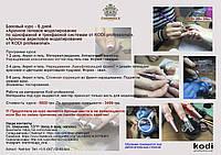 """Базовый курс""""Арочное акриловое и гелевое моделирование от KODI PROFESSIONAL""""-6 дней"""