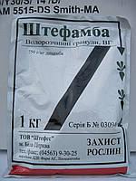 Гербицид «Штефамба» для защиты пшеницы