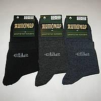 Мужские носки Житомир - 6.50 грн./пара (Elite, ассорти), фото 1