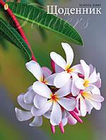 Дневник школьный жесткий (укр) «Соцветие»