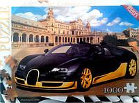 Пазлы 1000 элементов Danko toys (с1000-08-06)