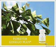 Гингко билоба с грибом рейши - Форевер Гингко Плюс.60 таб. США, фото 1