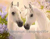 Картина по номерам Пара коней, 40х50см. (КН2433)