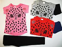 Комплект-двойка для девочки, размеры  98,104,110,116,122,128,Glostory, арт.GLT 1534