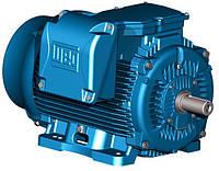 Электродвигатели WEG серия W 22
