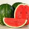 КАРИСТАН F1 - семена арбуза тип Кримсон Свит, 1 000 семян, Syngenta
