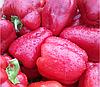 МИНТОС F1 - семена перца сладкого, 500 семян, Syngenta