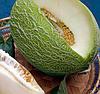 МАН F1 - семена дыни, 500 семян, Syngenta