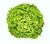 ИМЕДЖИНЕЙШН - семена салата тип Батавия дражированные, 1 000 семян, Rijk Zwaan