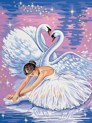 Раскраска по номерам Лебеди и балерина, фото 2