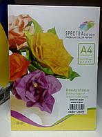 """Набор цветной бумаги А4/80/250л """"Spectra Color"""""""
