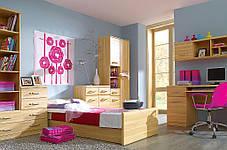Детская спальня Инди бук татра (BRW TM), фото 3