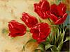 Раскраска по номерам Букет тюльпанов худ Левашов