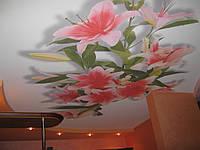Монтаж натяжных потолков с фотопечатью